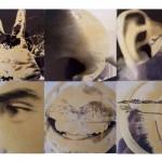 'I sensi' di Tivitavi