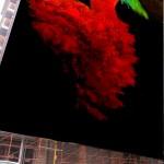 """""""Flamenco"""" di Gerarda Giorgia"""