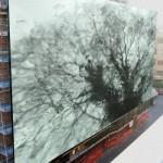 """""""Through the window"""" di Maria Cardamone"""