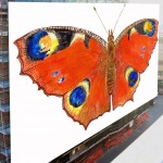 """Butterfly"" by Joanne Roberts"